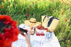 篮子、三明治、格子花呢披肩和汁液在鸦片调遣 葡萄酒te 库存照片