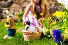 篮子兔宝宝复活节彩蛋草甸 免版税库存图片