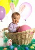 篮子兔宝宝 库存图片