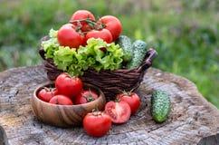 篮子和木板材有新鲜蔬菜的(蕃茄, cucumbe 免版税图库摄影