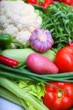 篮子圆白菜红萝卜花椰菜半莴苣葱堆土豆三棵蕃茄蔬菜 免版税库存照片
