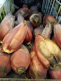 篮子圆白菜红萝卜花椰菜半莴苣葱堆土豆三棵蕃茄蔬菜 库存照片