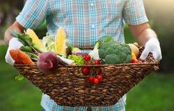 篮子在一个人的手上填装了新鲜蔬菜 库存照片