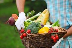 篮子在一个人的手上填装了新鲜蔬菜 图库摄影