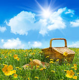 篮子域帽子野餐秸杆夏天 免版税图库摄影