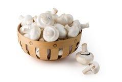 篮子域蘑菇 免版税库存照片