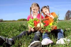 篮子女孩愉快的蔬菜 库存照片