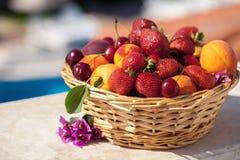 篮子新鲜水果查出夏天白色冬天 免版税库存照片