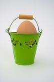 篮子本色蛋的绿色 免版税库存照片