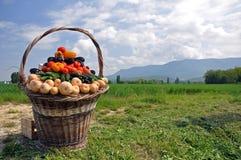 篮子果菜类 图库摄影