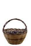 篮子橄榄 库存图片