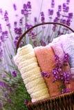 篮子淡紫色柳条 免版税图库摄影