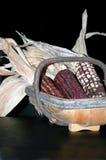 篮子玉米 图库摄影