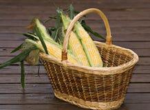 篮子玉米 库存图片