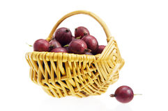 篮子用一个红色鹅莓的浆果 库存图片