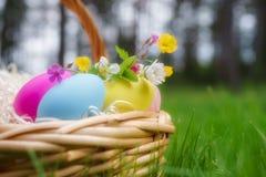 篮子用五颜六色的复活节彩蛋和春天在绿色开花 免版税库存图片