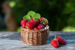 篮子用在一张木桌上的一棵樱桃在一个绿色庭院的背景 免版税库存照片