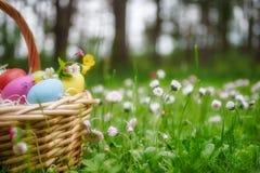 篮子用在草坪的五颜六色的复活节彩蛋有雏菊的开花 免版税库存图片