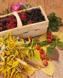 篮子用成熟莓果和被归档的花花束用臀部和秋叶装饰的木表面上的填装了 免版税库存照片