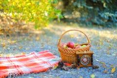 篮子用站立在草和时钟,黄色的红色毯子附近的苹果在背景离开 免版税库存照片