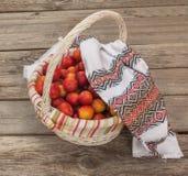 篮子用红色李子盖了一块被绣的毛巾 库存照片