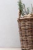 篮子用迷迭香 免版税图库摄影