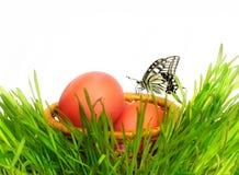 篮子用鸡蛋和一只蝴蝶在草 免版税库存照片