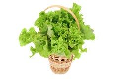 篮子绿色莴苣沙拉 免版税库存图片