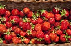 篮子草莓 免版税库存照片