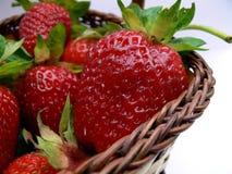 篮子草莓 库存图片