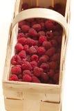 篮子莓 免版税库存图片