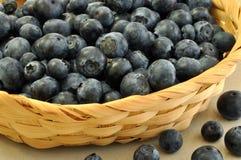 篮子蓝莓 库存图片