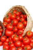 篮子蕃茄 免版税库存图片