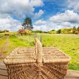 篮子野餐步骤 免版税库存照片