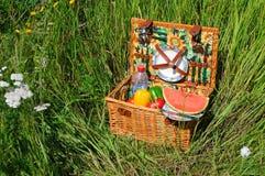 篮子野餐 免版税库存图片