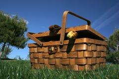 篮子野餐 库存照片