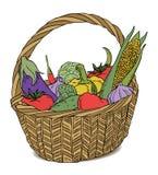 篮子颜色不同的果子 库存图片