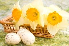 篮子黄水仙复活节彩蛋 免版税库存图片
