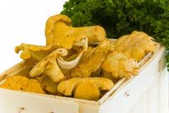 篮子黄蘑菇 免版税图库摄影