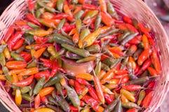 篮子chiles 免版税库存图片