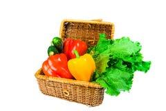 篮野餐蔬菜 免版税库存照片