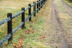 篱芭和土路在农场 库存照片