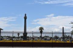 篱芭和花的领域在夹竹桃公墓在加尔维斯顿TX 免版税图库摄影