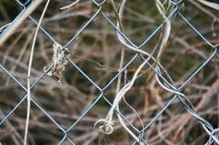篱芭由金属滤网特写镜头制成 在篱芭后是干草 抽象背景 库存照片