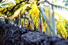 篱芭由玻璃制成 库存图片