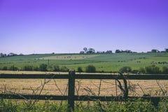 篱芭的细节有使充电的架线在爱尔兰乡下 图库摄影