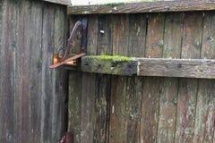 篱芭老被佩带的外背景 免版税图库摄影