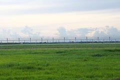 篱芭阻拦的绿色草甸 免版税库存图片