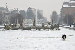 米兰、伦巴第、意大利、雕象和喷泉在朱利奥塞萨尔广场,在新的Citylife地区附近 库存照片