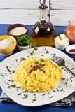 米兰尼斯经的意大利煨饭 免版税库存照片